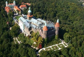Niesamowite Polskie Zamki: opis, historia, ciekawostki i opinie