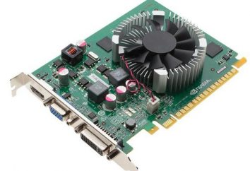 Akcelerator graficzny NVIDIA GeForce GT 440: charakterystyka, porównanie z rówieśnikami i opinii użytkowników
