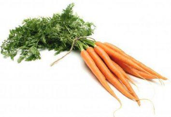 fanes de carottes: les dommages et les avantages pour l'organisme