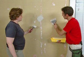 Comment mâcher les murs sous le fond d'écran: instructions étape par étape