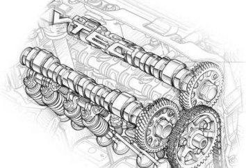CFNA (motor): características, características, problemas