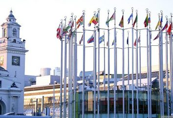 Jaka jest tolerancja w stosunkach międzynarodowych? Kultura stosunków między grupami