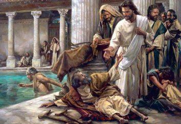"""Che significa """"Beati i poveri in spirito""""?"""