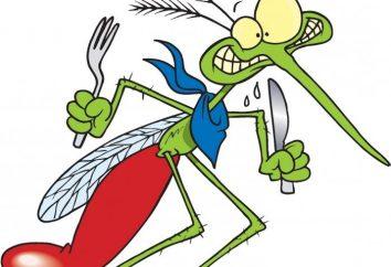 picadura de mosquito. Tratamiento y prevención