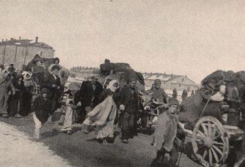 Armenian Genocide of 1915: powoduje. Armenian Genocide of 1915: efekty. Historia 1915 ludobójstwa