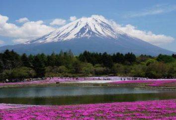 independente viagem para o Japão