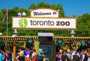 Canada, attractions de Toronto. Description et photo