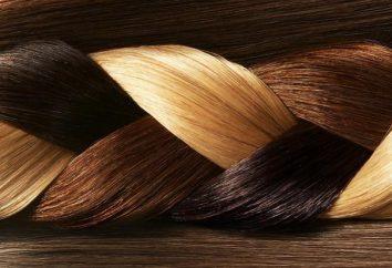"""colorant des cheveux """"Garnier Couleur Sense"""": la palette de couleurs, avis, photos"""