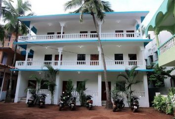 Samira Beach Resort 2 * (India / Goa): foto e recensioni