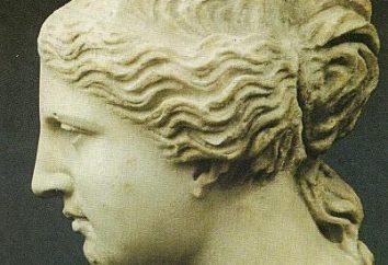 Stwórz swoją grecką nos pędzla makijażu!