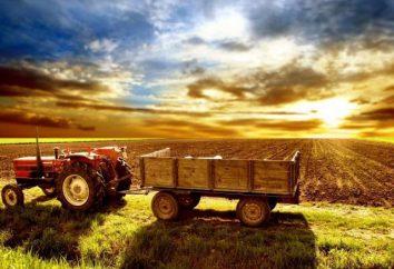 Ciągnik-kierowca z produkcji rolnej: opis stanowiska, instrukcje