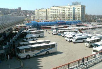A principal estação de ônibus é Rostov-on-Don. Telefone da estação rodoviária de Rostov