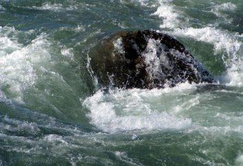 Qu'est-ce qu'un rapides de la rivière: surmonter les obstacles d'eau