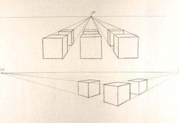 Você não sabe como desenhar um cubo? Este artigo é para você!