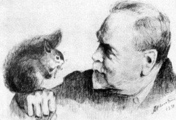 """Historia malarstwa i opis Rylova """"Pole pock"""""""