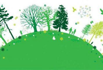Umweltrecht und Umwelt Pflichten der Bürger der Russischen Föderation: allgemeine Merkmale, die Beziehung