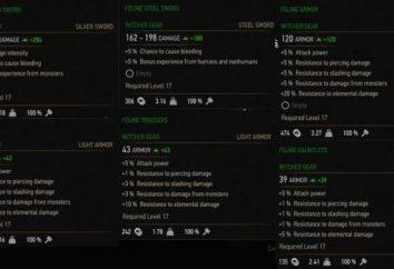 """""""The Witcher 3"""" armadura Kota escola: descrição e recomendações equipamentos"""