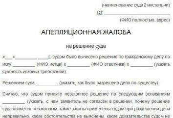 Il ricorso contro la sentenza del Tribunale distrettuale: la procedura per il deposito