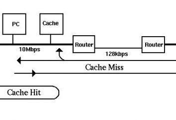 Co to jest cache? Cache w przeglądarce, co musi być oczyszczone?