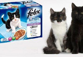 « Felix » (nourriture pour chats): commentaires des internautes et des vétérinaires