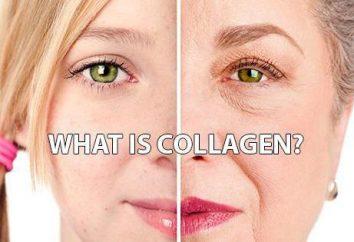 Crème pour le visage avec du collagène: les examens de l'efficacité