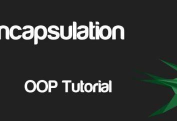 Encapsulation – co to jest? Enkapsulacja w programowaniu