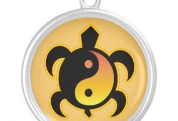 Turtle. o que o símbolo representa esse animal?