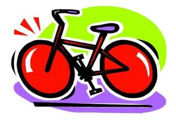 """Rower """"Stealth"""": opinie i opinie właścicieli"""