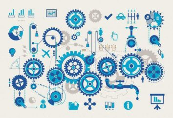 Automatyzacja procesów technologicznych i produkcji (specjalność): gdzie pracować