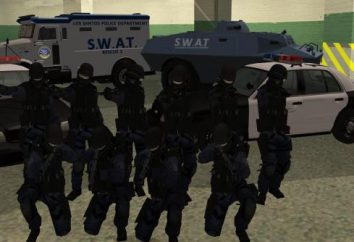 Interessante di GTA: polizia