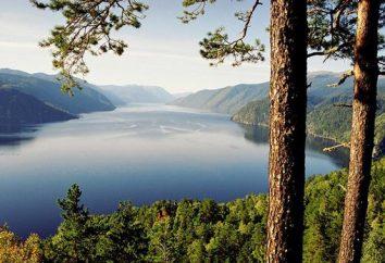 Descansa no lago Teletskoye: selvagens e na base