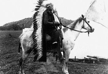 Comanche – Indiens des plaines américaines. Histoire et des photos