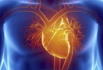 Erste-Hilfe für einen Herzinfarkt. Symptome eines Herzinfarktes