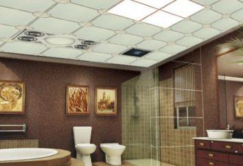 Massimali per bagni: caratteristiche decorazione d'interni