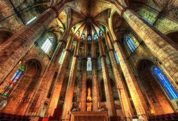 cattedrale gotica – la grandezza architettonica del pensiero medievale