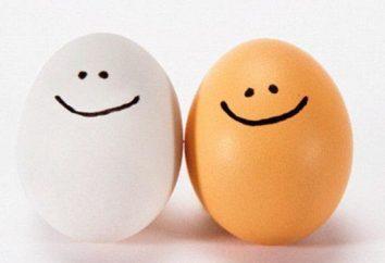 quebra-cabeça interessante sobre o ovo