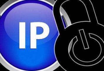 """¿Cómo sabe que cuya dirección IP en la sección """"Contáctenos""""? Secretos de la exposición sobre IP"""