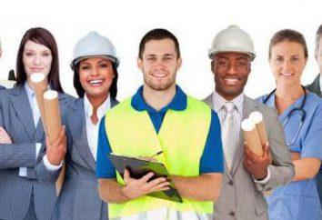 Ingeniero de trabajo y seguridad: descripción del trabajo