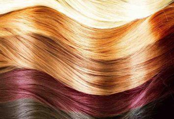 Colores para la teoría de peluqueros. peluquería