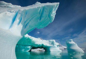 Antarctica – um país de gelo. O que mais você sabe sobre a Antártica