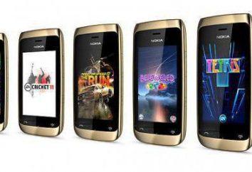 Nokia Asha 308: uma visão geral de um telefone orçamento