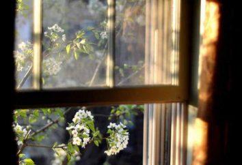 Dlaczego sen na otwartym oknie? Książka snów powie!