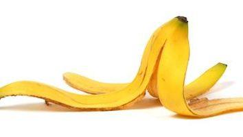Buccia di banana e la sua applicazione. Fertilizzanti da buccia di banana per le piante d'appartamento