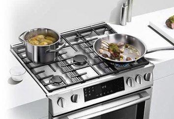 Recenzje: Bosch kuchenka gazowa. Połączone kuchenki gazowe Bosch: Instrukcja obsługi, naprawy