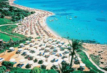 Tout sur l'hôtel Maria Apartments (Chypre / Ayia Napa)