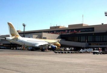 Gulf Air: recenzje. Narodowe linie lotnicze Bahrajnu