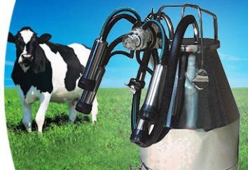 Inicio máquina de ordeño de las vacas: consejos sobre cómo elegir y comentarios
