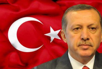 Il presidente turco Erdogan Recep Tayyip: biografia, l'attività politica