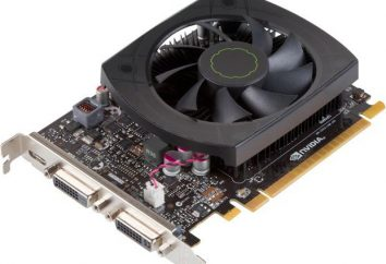 GeForce GTX 650 Ti (grafika): Cechy i opinie