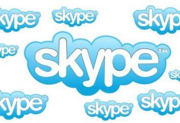 """Por que não vai para """"Skype"""": causas e possíveis soluções"""